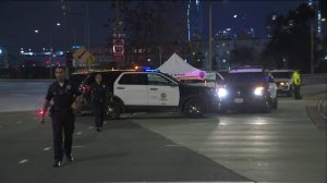 Police investigate the scene of a hit-and-run in which a man was struck and killed by a bus at Adams Boulevard and Flower Street in the University Park neighborhood of Los Angeles on Jan. 10, 2019.
