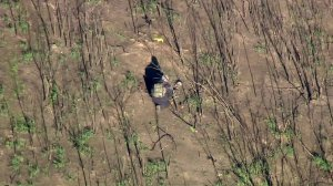 Authorities investigate human remains found in Malibu on Jan. 22, 2019. (Credit: KTLA)