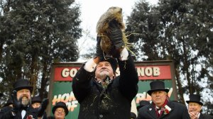 Punxsutawney Phil did not see his shadow predicting an early spring during the 133rd annual Groundhog Day festivities on February 2, 2019 in Punxsutawney, Pennsylvania. (Credit: Jeff Swensen/Getty Images)