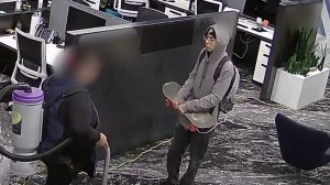 Irvine police released surveillance video of a man they say attacked and tried to rape a woman on Feb. 6, 2019.