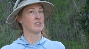 Johanna Turner with Arroyos & Foothills Conservancy speaks to KTLA. (Credit: KTLA)