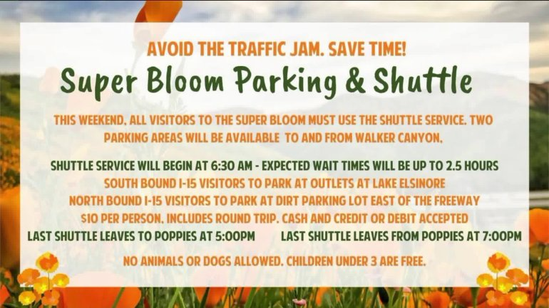 This graphic shows new procedures for visitors heading to Lake Elsinore to view the super bloom.