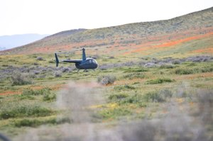 A visitor took this photo of the helicopter landing in the middle of the poppy fields. It was shared on the Antelope Valley California Poppy Reserve Facebook page on March 26, 2019.