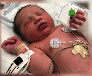 georgia newborn