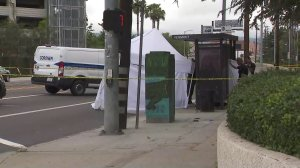 Investigators respond to a bus stop in Harbor City where a man was shot dead on June 20, 2019. (Credit: KTLA)
