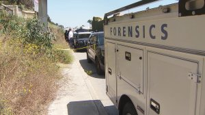 Authorities investigate the discovery of a body on a bluff overlooking Pacific Coast Highway in Santa Monica on June 22, 2019. (Credit: KTLA)