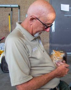 The city of Moreno Valley released this image of one of the rescued cats.