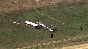 A small plane is seen after crashing in Camarillo on Aug. 7, 2019. (Credit: KTLA)