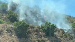 Smoke and flames are seen on the hillside along the 10 Freeway in Covina on Aug. 17, 2019. (Credit: KTLA)