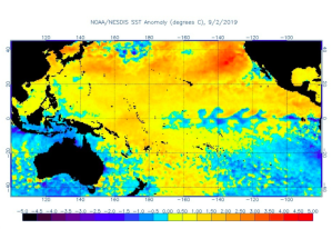 A NOAA map of sea surface temperature anomalies in the Pacific Ocean shows a blob of unusually warm water off the U.S. Pacific Coast.(Credit: NOAA National Environmental Satellite, Data and Information Service)