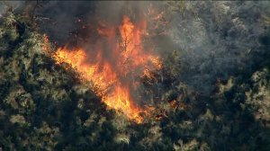 Flames burn through areas of Riverside County near Murrieta on Sept. 4, 2019, in what's been dubbed the Tenaja Fire. (Credit: KTLA)