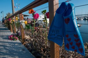 A pair of diving fins and flowers at a memorial wall were placed near the Truth Aquatics moorings in Santa Barbara on Sept. 2, 2019. (Credit: MARK RALSTON/AFP/Getty Images)