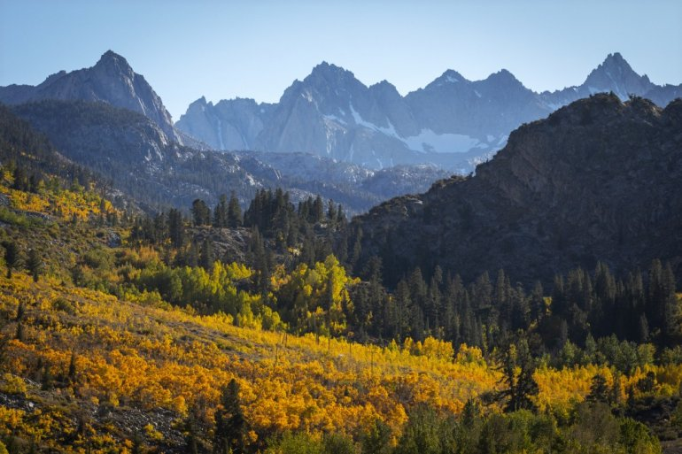Fall colors are seen Oct. 6, 2019, above the Cardinal Village Resort in Inyo National Forest, west of Bishop. (Credit: Francine Orr / Los Angeles Times)