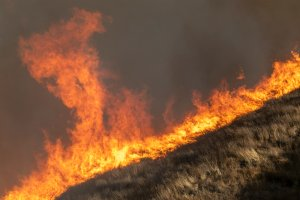Strong winds drive the Easy Fire on October 30, 2019 near Simi Valley (Credit: by David McNew/Getty Images)