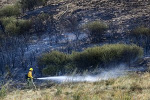 A Cal Fire firefighter mops up a hot spot on a hillside along Highway 18 in San Bernardino on Oct. 24, 2019. (Credit: Irfan Khan / Los Angeles Times)