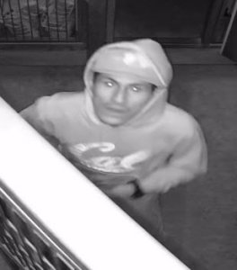 Authorities are seeking the man pictured in this surveillance photos in connection with a burglary at the spcaLA in Los Angeles' West Adams neighborhood on Oct. 9, 2019. (Credit: spcaLA)