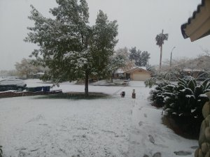 Snow is seen in Palmdale on Nov. 28, 2019. (Credit: Thomy Perez)