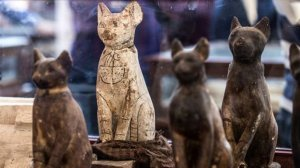 Statues of cats are displayed after the announcement of a new discovery carried out by an Egyptian archaeological team in Giza's Saqqara necropolis, south of the capital Cairo, on November 23, 2019. (Credit: KHALED DESOUKI/Getty Images)