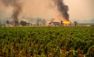 A building is engulfed in flames at a vineyard during the Kincade Fire near Geyserville, California. on Oct. 24, 2019. (Credit: Josh Edelson /AFP via Getty Images)