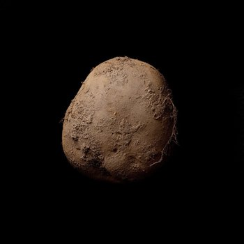 "A photogenic potato, at least for renowned celebrity photographer Kevin Abosch. His ""Potato #345"" -- a simple portrait of an organic Irish spud -- reportedly sold for €1 million ($1.08 million) last year to a European businessman, who saw it while dining at Abosch's Paris home."