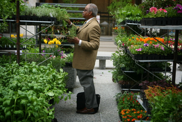 Joseph Randle stops on his way to work to shop for herbs as the first Chicago Farmers Market opens in Daley Plaza, May 12, 2011. (E. Jason Wambsgans/ Chicago Tribune/MCT via Getty Images)