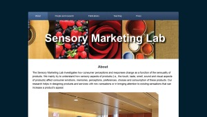 SensoryMarketingLab