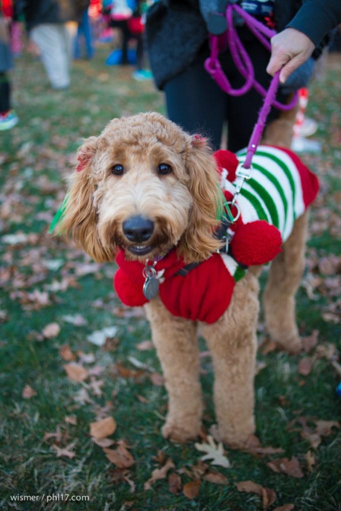 Ugly-Sweater-Run-December 19, 2015-1109