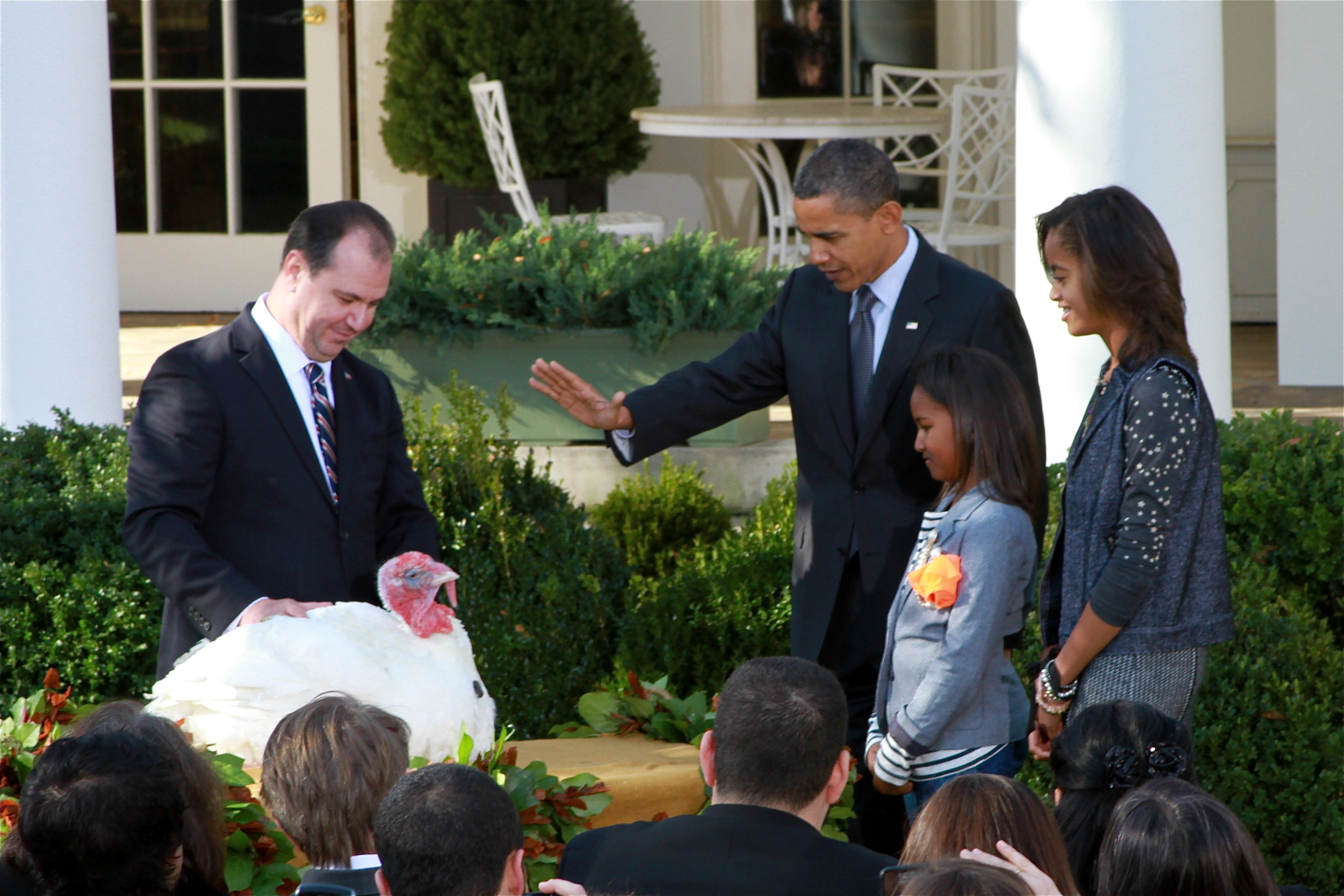 The White House. President Obama continues the tradition of pardoning the National Thanksgiving Turkey in the Rose Garden. His daughters Sasha and Malia accompanied him.