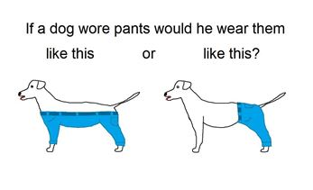 dog pants cnn