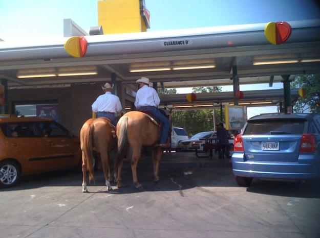 horses drive thru