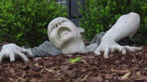 """Claude the Zombie appears to have """"clawed"""" his way out of Jim Grinstead's garden."""